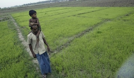 INDIA'S GROWTH LESS DEPENDENT ON MONSOON