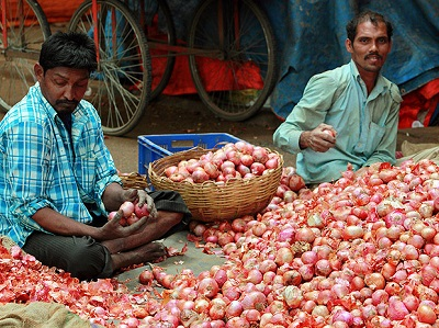 Onion Prices decreased in MP