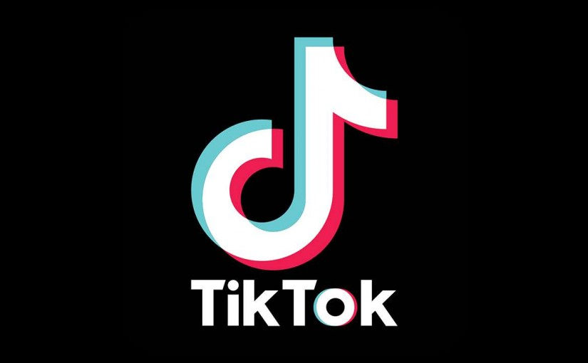Popular video app tik tok ban, ourvoice, werIndia