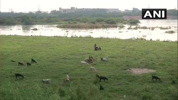 River Yamuna Water Above Warning Level Vehicles Stopped